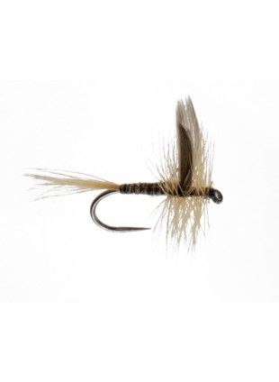 Ginger Quill (Barbless)