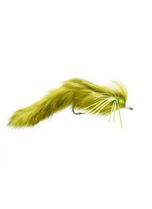 Hare Grub : Olive