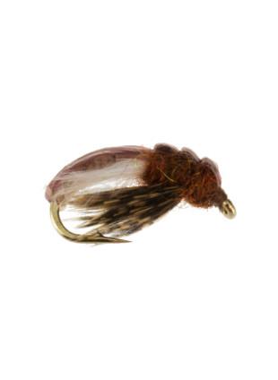 Hydropsyche Caddis Larva