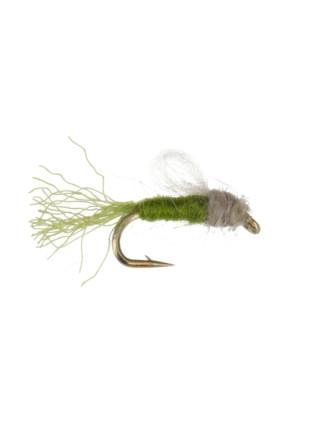 Iris Caddis : Olive