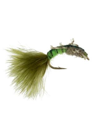 Jumbo Caddis : Chartreuse