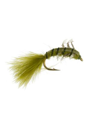 Jumbo Caddis : Olive