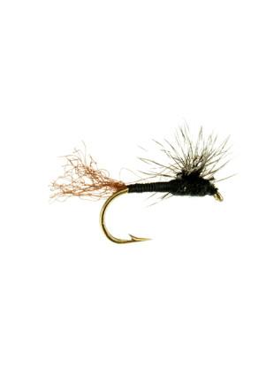 Parachute Sparkle Dun : Black